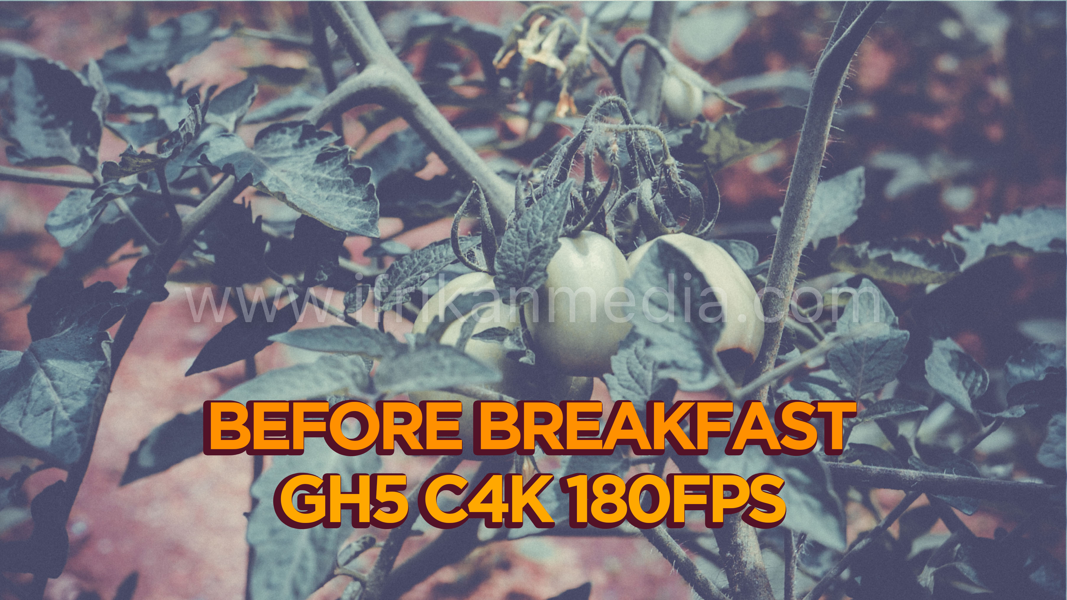 Before Breakfast – GH5 4K